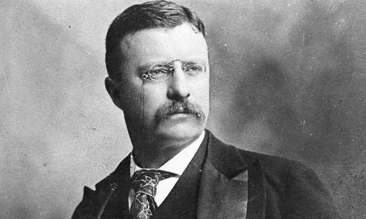 Théodore Roosevelt ou la séduction ambiguë d'une hégémonie